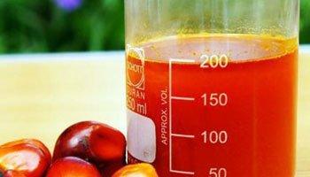 Crude Palm Oil (CPO)